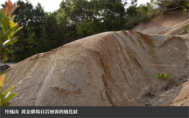 丹鳳山黃金劇場頁岩層裏的風化紋