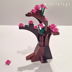 #lego #almond in #bloom