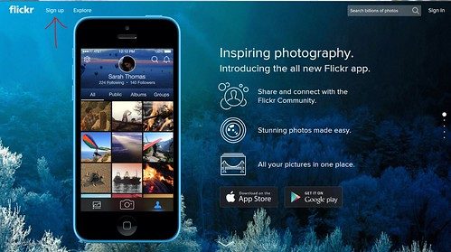 Flickr Signup