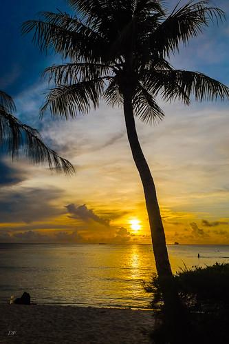 ocean sunset beach palmtree saipan fujix100s