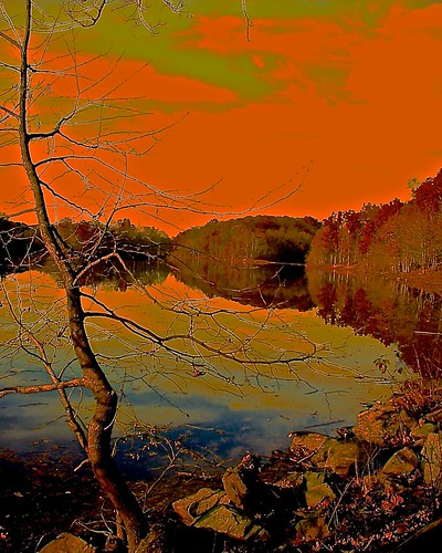 trees sky orange usa lake colors stones maryland orangesky rockville needwoodlake outstandingromanianphotographers