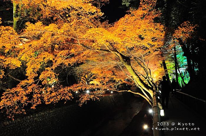 北野天滿宮-御土居 (13).jpg