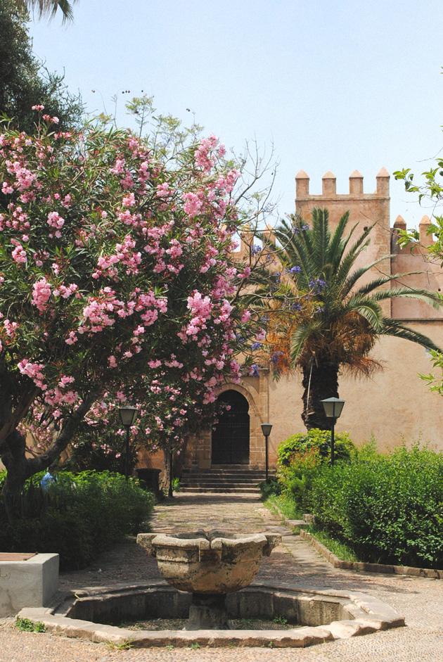 moroccogarden