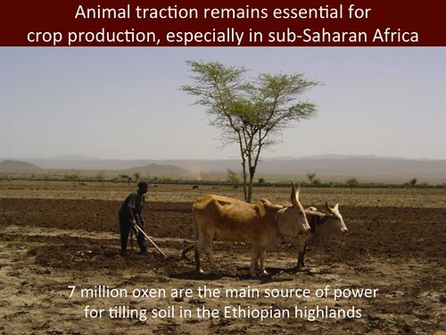 Mixed Crop-Livestock Systems: Slide 16