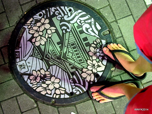 Osaka Castle at your Feet