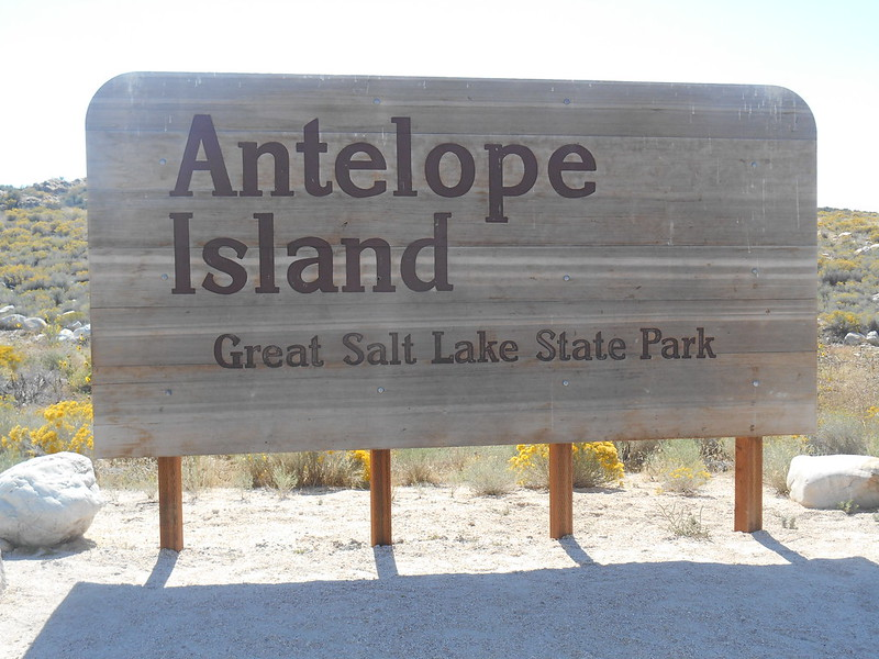 Antelope Island State Park, Syracuse, UT(117)