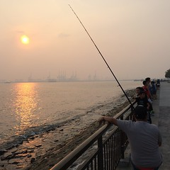 fishing, sea, recreation, shore, morning, coast, fisherman, angling, sunset,