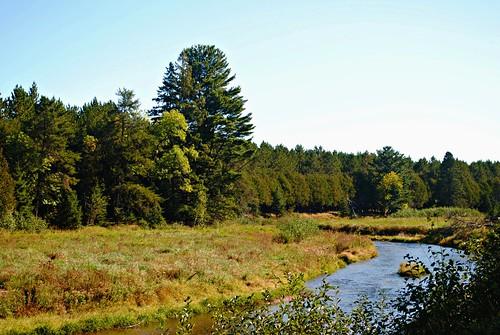 eauclaireriverflowage nature river forest trees gordon gordonwi gordonwisconsin douglascounty rural wisconsin wi midwest unitedstates usa unitedstatesofamerica