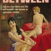 Midwood Books F260 - Jay Warren - The Path Between by swallace99