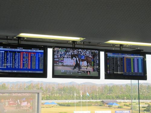 金沢競馬場でのJRAのレースオッズ表示