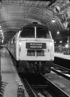 From The Black & White File - Paddington Nights D1010