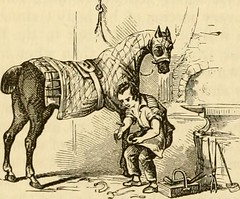 "Image from page 447 of ""The horse in the stable and the field : his management in health and disease"" (1869)"
