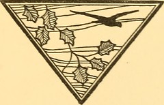 "Image from page 16 of ""Bird notes afield; essays on the birds of the Pacific coast with a field check list"" (1907)"