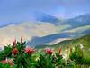 Arangiekop Proteas