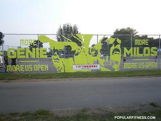 Eugenie Bouchard and Milos Raonic - Tennis Ball Image