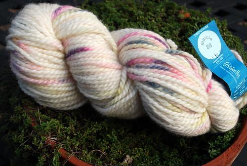 Kettle dyed Colinette Iona yarn skein in stash