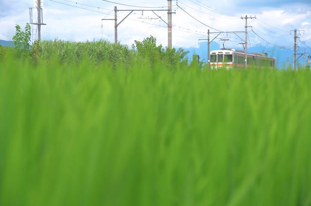 身延線 甲斐上野-東花輪