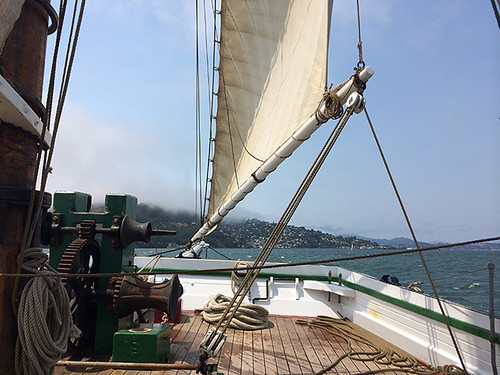 twds Sausalito from Alma