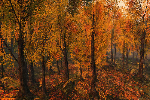 autumn trees forest sl secondlife virtualworld morgananagorski