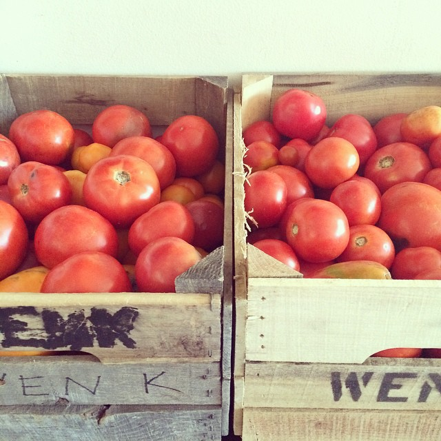 It's tomato week round these parts. I've got 75 pounds of seconds to work through!
