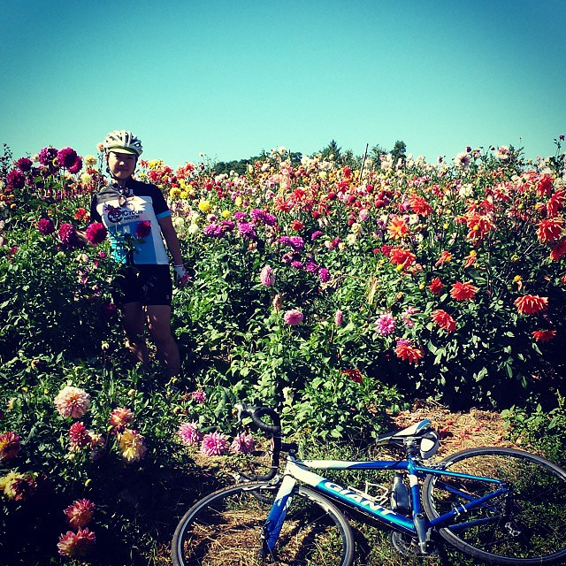 Such a magical spot on our ride #dahlias #gtagranfondo