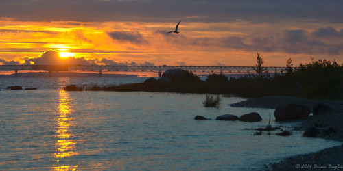 sky sun reflection bird water clouds mi sunrise unitedstates michigan lakemichigan strait mackinac mackinaw mackinawbridge mackinawcity