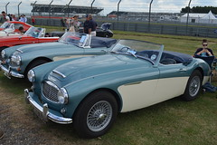 race car(0.0), ac ace(0.0), ac cobra(0.0), supercar(0.0), automobile(1.0), vehicle(1.0), automotive design(1.0), austin-healey 100(1.0), austin-healey 3000(1.0), antique car(1.0), classic car(1.0), vintage car(1.0), land vehicle(1.0), coupã©(1.0), sports car(1.0),