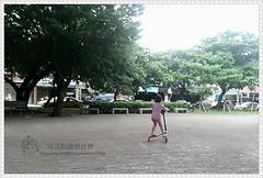 IMAG6245