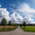 Viikki landscapes
