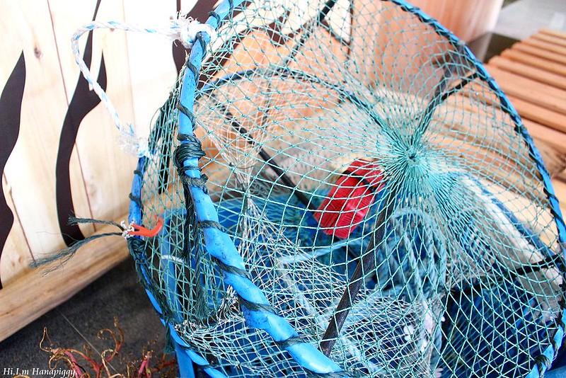 西北萬里蟹 (26)