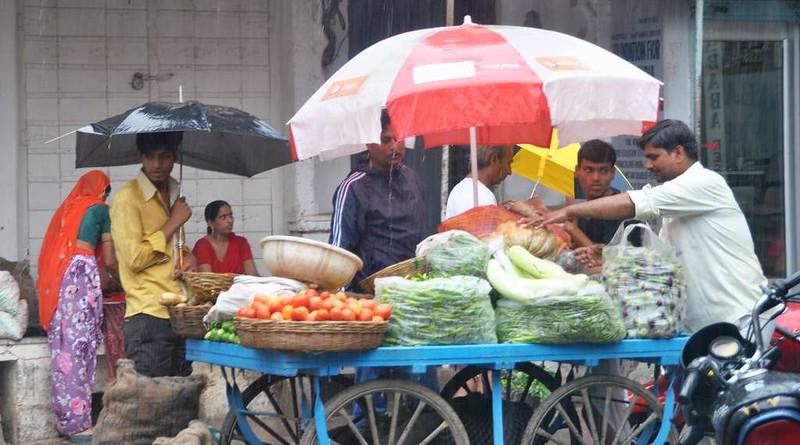 483 Ultimos dias en Pushkar  (8)
