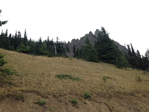 Surveying at Steeple Rock 2