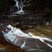 Leura Upper Cascades by sachman75