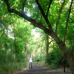Elm Fork Nature Preserve 130720(002)