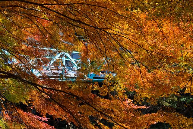 a bridge in fall, RICOH PENTAX K-3 II, HD PENTAX-DA 16-85mm F3.5-5.6 ED DC WR