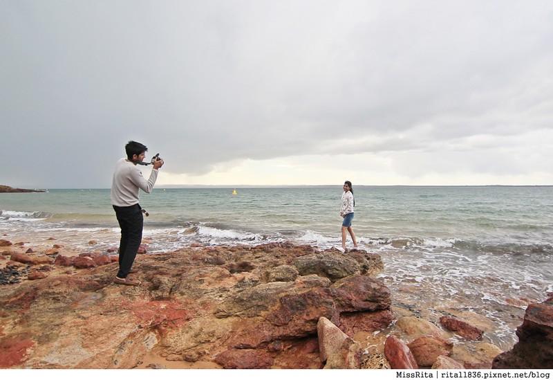 KKDAY 墨爾本自由行 melbourne gowesttours kkDAY墨爾本 墨爾本企鵝 澳洲自助 墨爾本自助 菲利浦島 菲利浦島交通 墨爾本必去 墨爾本酒莊 月光野生動物 Nobbies 墨爾本企鵝歸巢 墨爾本一日遊 菲利普島一日遊,小企鵝歸巢遊行82