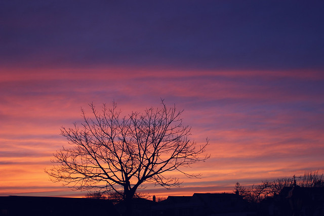 sunset 4.19.14