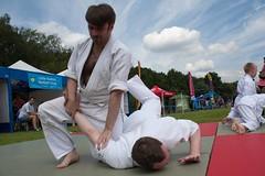 hapkido(1.0), individual sports(1.0), contact sport(1.0), sports(1.0), combat sport(1.0), martial arts(1.0), judo(1.0), taekkyeon(1.0), japanese martial arts(1.0), jujutsu(1.0), brazilian jiu-jitsu(1.0),