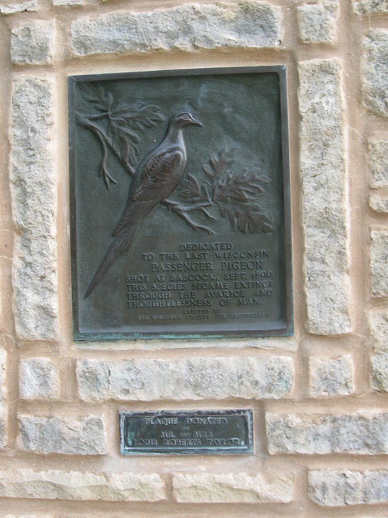Passenger Pigeon Memorial, Wyalusing State Park | Blog post:… | Flickr