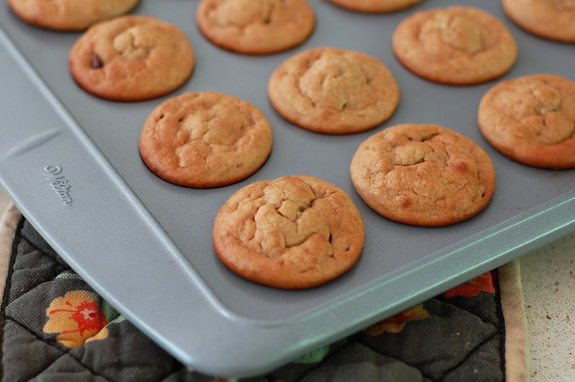 Quick, Melt-In-Your-Mouth Mini Muffins - Gluten, Grain & Dairy-Free by Eve Fox, the Garden of Eating, copyright 2014