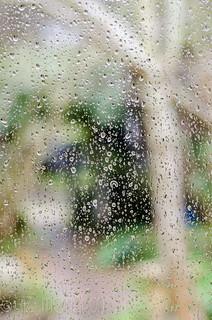 Rain on my window..
