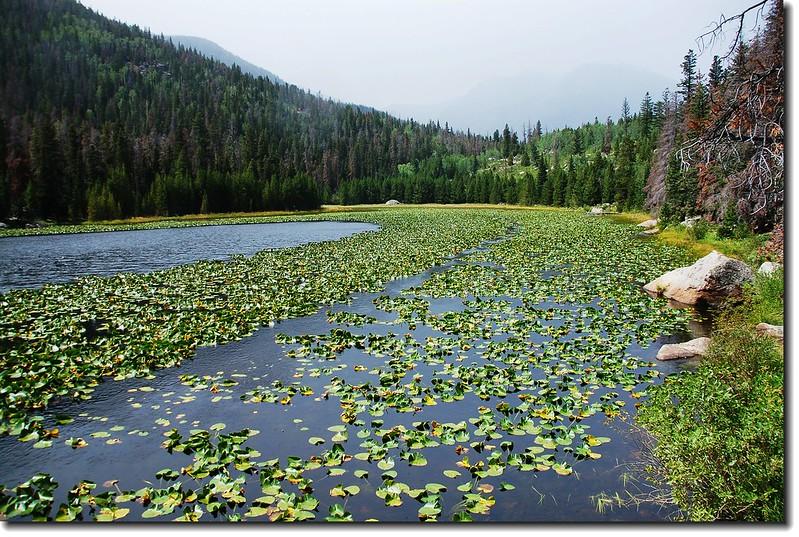 Cub Lake 2