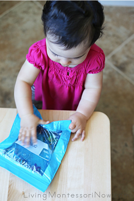 Exploring the Ocean Sensory Bag