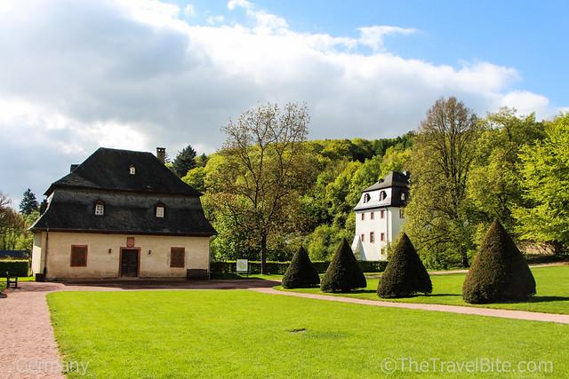 Rheingau Wine Region Germany-67
