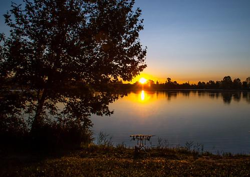 park lake sunrise fishing nikon 500v20f ghost carp d40x