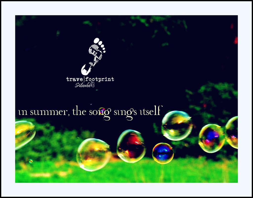 travelfootprint-summer