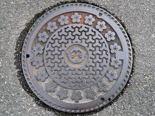 Gamo Shiga, manhole cover (滋賀県蒲生町のマンホール)