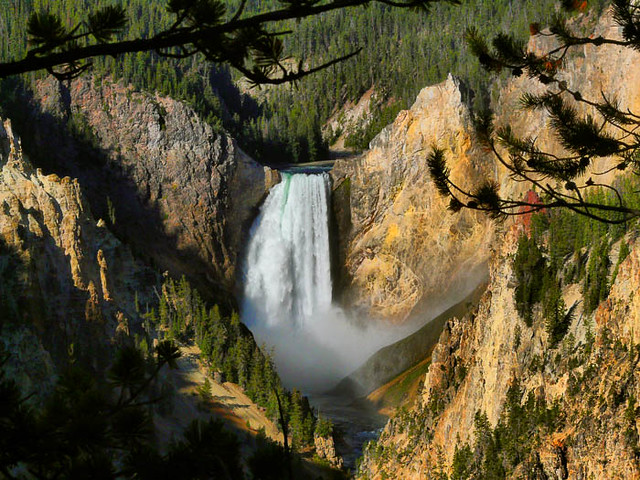 Lower Falls of the Yellowstone River from Artists Point