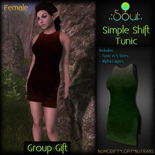 2014 Simple Shift Tunic GroupGift Female