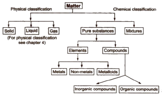 CBSE Class 11 Chemistry Notes Basic Concepts of Chemistry